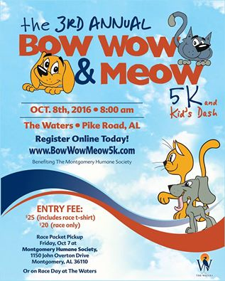 Bow Wow & Meow at The waters