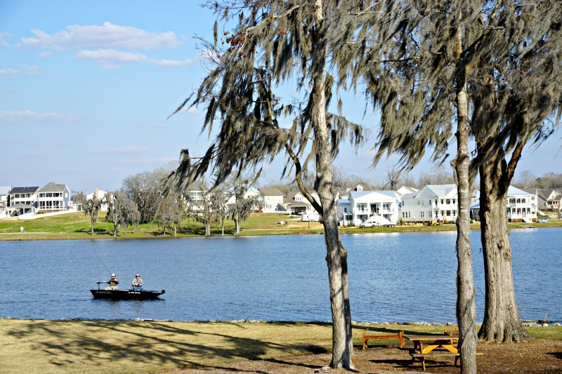 Fishing on lake cameron